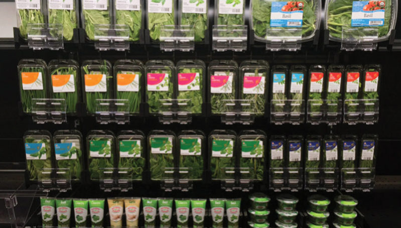 Various sizes of packaged fresh green herbs on a SpaceGrid DoubleSpace pusher tray system